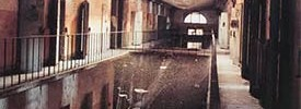 carcere_art