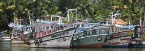 Kerala_canal_boats_fishing_harbour