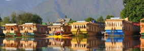Srinagar-Kashmir